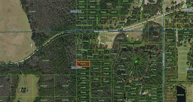 Sweet Hill Road N, Polk City, FL 33868 (MLS #A4481361) :: Bob Paulson with Vylla Home