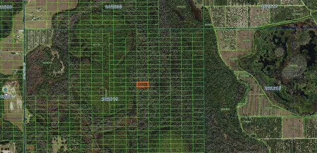 Sweethill Road, Polk City, FL 33868 (MLS #A4481363) :: Southern Associates Realty LLC