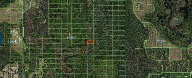 Sweethill Road, Polk City, FL 33868 (MLS #A4481364) :: The Kardosh Team