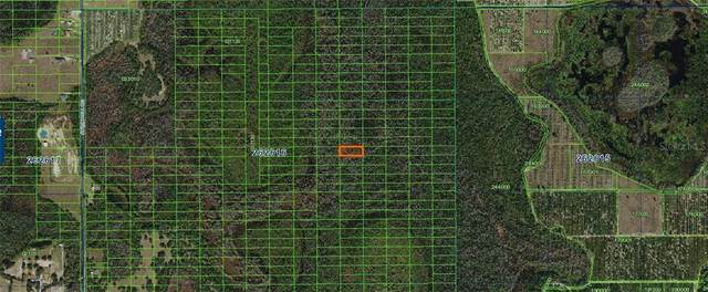 Sweethill Road, Polk City, FL 33868 (MLS #A4481365) :: Griffin Group