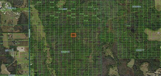 Old Grade Road, Polk City, FL 33868 (MLS #A4481366) :: BuySellLiveFlorida.com