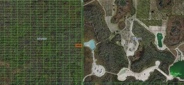 Sweethill Road, Polk City, FL 33868 (MLS #A4481368) :: Team Buky