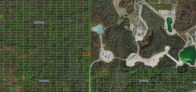 Sweethill Road, Polk City, FL 33868 (MLS #A4481369) :: Premium Properties Real Estate Services