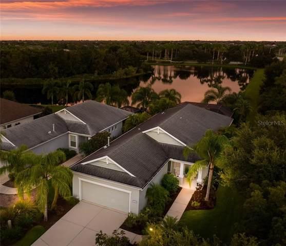 11204 White Rock Terrace, Bradenton, FL 34211 (MLS #A4481732) :: Pepine Realty