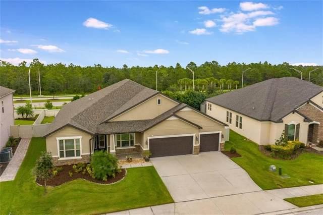 13132 Bliss Loop, Bradenton, FL 34211 (MLS #A4481788) :: Gate Arty & the Group - Keller Williams Realty Smart