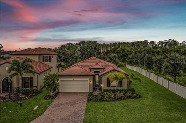 4406 Baltry Court, Bradenton, FL 34211 (MLS #A4481893) :: Real Estate Chicks