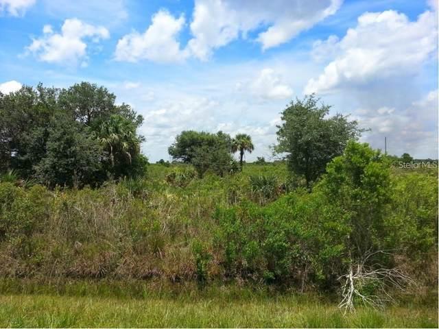 16785 NW 308TH Street, Okeechobee, FL 34972 (MLS #A4481963) :: Pepine Realty