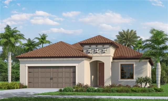 208 Ariano Way, Nokomis, FL 34275 (MLS #A4482447) :: Young Real Estate