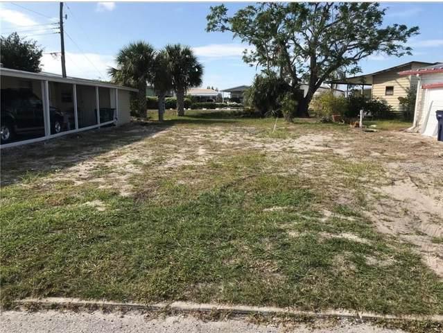 203 Bimini Drive, Palmetto, FL 34221 (MLS #A4482491) :: Zarghami Group