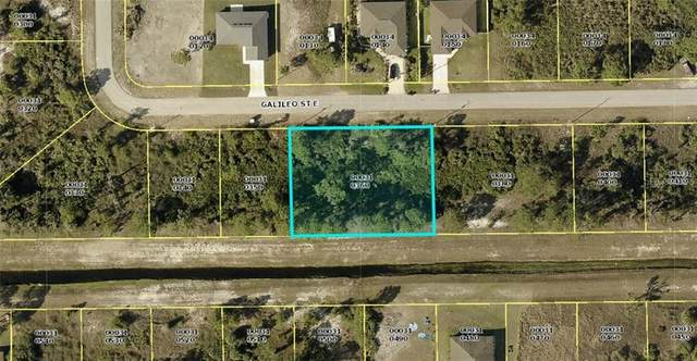 1138 Galileo Street E, Lehigh Acres, FL 33974 (MLS #A4483779) :: Sarasota Gulf Coast Realtors
