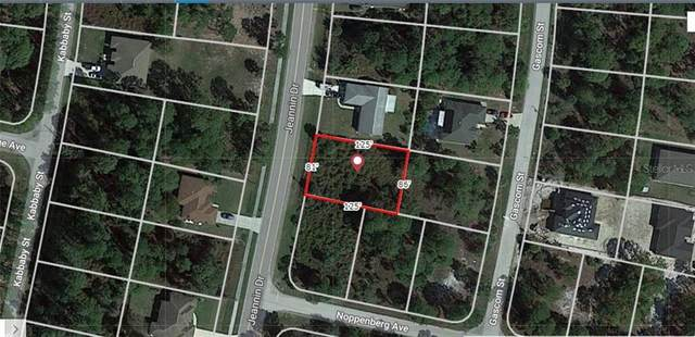 Jeannin Drive, North Port, FL 34288 (MLS #A4484132) :: Carmena and Associates Realty Group
