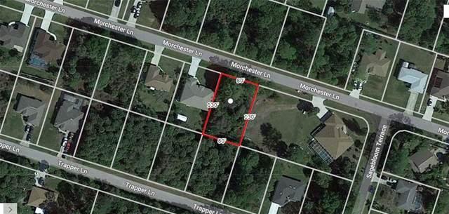 Morchester Lane, North Port, FL 34286 (MLS #A4484169) :: Delgado Home Team at Keller Williams