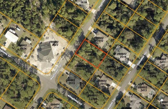 Mayflower Terrace, North Port, FL 34286 (MLS #A4484411) :: Carmena and Associates Realty Group