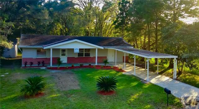 15304 Pasco Lake Drive, Spring Hill, FL 34610 (MLS #A4484480) :: Griffin Group