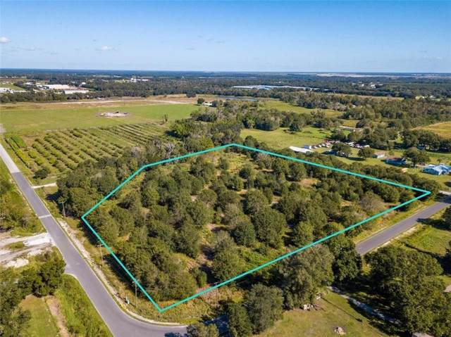 1298 Old Bradenton Road, Wauchula, FL 33873 (MLS #A4484490) :: Griffin Group