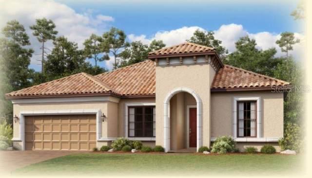 5231 Rushmere Court, Palmetto, FL 34221 (MLS #A4484513) :: CENTURY 21 OneBlue