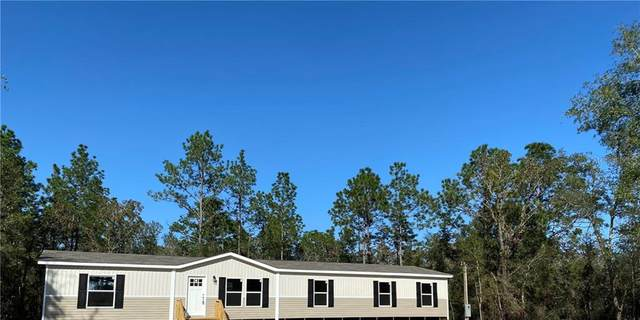 13891 NE 9TH Street, Williston, FL 32696 (MLS #A4484532) :: Baird Realty Group
