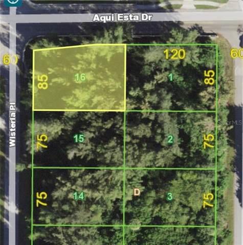3200 Wisteria Place, Punta Gorda, FL 33950 (MLS #A4484963) :: EXIT King Realty