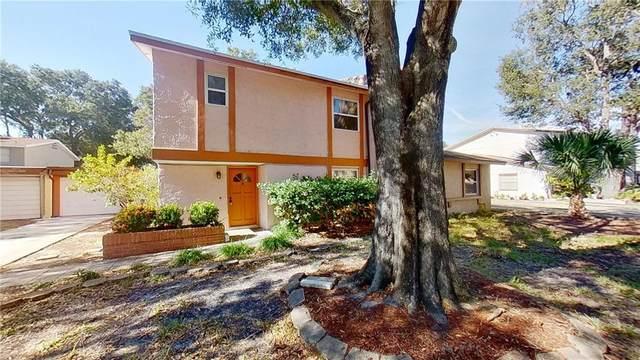 2062 San Sebastian Way N, Clearwater, FL 33763 (MLS #A4485262) :: The Heidi Schrock Team