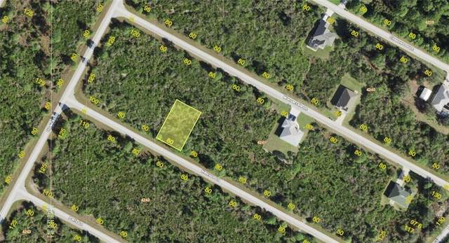 14032 Newson Lane, Port Charlotte, FL 33981 (MLS #A4485459) :: Young Real Estate