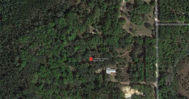 115 Jonas Road, Crescent City, FL 32112 (MLS #A4485928) :: Griffin Group