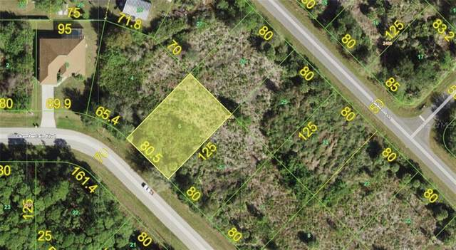 12232 Chamberlain Boulevard, Port Charlotte, FL 33953 (MLS #A4486330) :: Young Real Estate