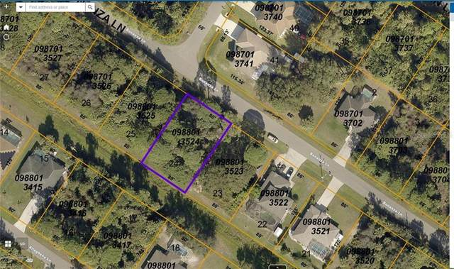 Bonanza Lane, North Port, FL 34286 (MLS #A4486396) :: Realty One Group Skyline / The Rose Team