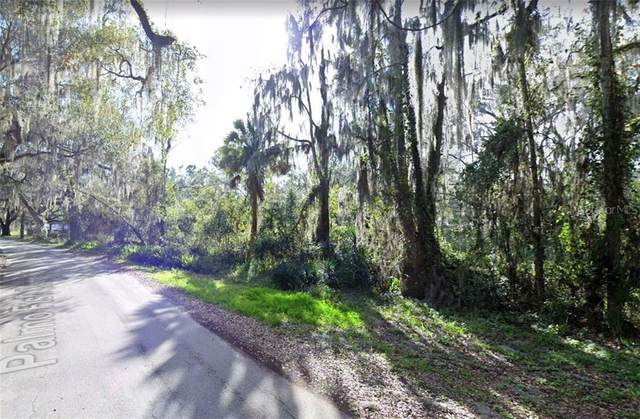 8527 Palmo Fish Camp Road, Saint Augustine, FL 32092 (MLS #A4486455) :: Griffin Group