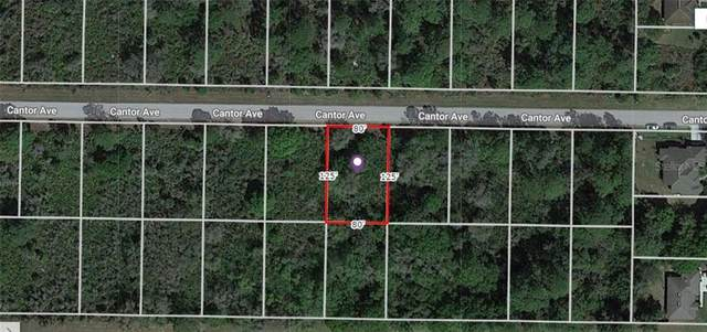 Cantor Avenue, North Port, FL 34291 (MLS #A4486567) :: Griffin Group