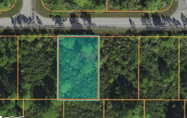 12175 Cassino Avenue, Port Charlotte, FL 33953 (MLS #A4487461) :: Young Real Estate
