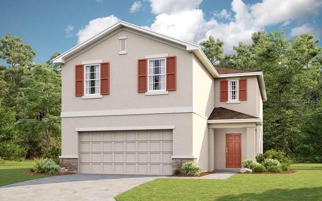 6208 Springmont Loop, Palmetto, FL 34221 (MLS #A4487527) :: Frankenstein Home Team