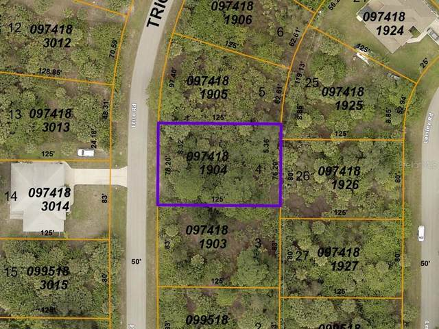 Trico Road, North Port, FL 34287 (MLS #A4487689) :: Griffin Group