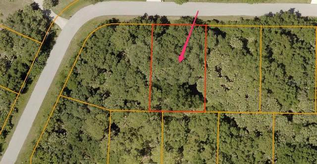 Shawnee Ter, North Port, FL 34286 (MLS #A4487716) :: Young Real Estate