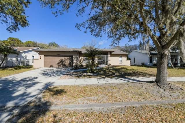 2159 Cork Oak Street, Sarasota, FL 34232 (MLS #A4487979) :: Visionary Properties Inc