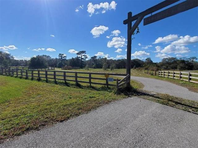 Mossy Oak Lane, Myakka City, FL 34251 (MLS #A4488052) :: Sarasota Home Specialists