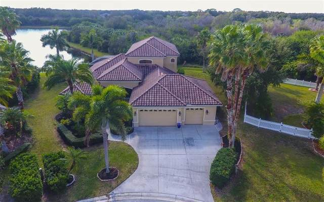 323 Snapdragon Loop, Bradenton, FL 34212 (MLS #A4488262) :: The Duncan Duo Team