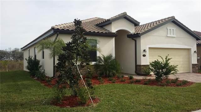 156 Wandering Wetlands Circle, Bradenton, FL 34212 (MLS #A4488347) :: Everlane Realty