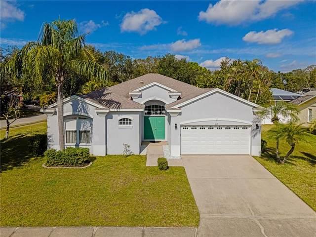 4119 2ND Avenue E, Bradenton, FL 34208 (MLS #A4488473) :: Everlane Realty