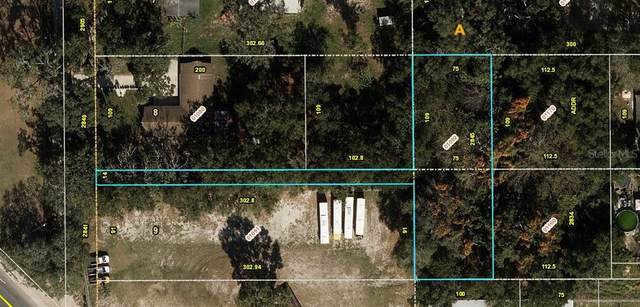 2845 Donald Avenue, Zellwood, FL 32798 (MLS #A4488846) :: Griffin Group