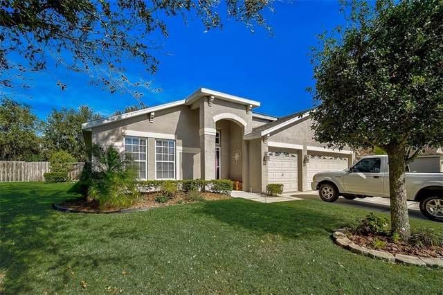 12053 Warwick Circle, Parrish, FL 34219 (MLS #A4489197) :: Medway Realty