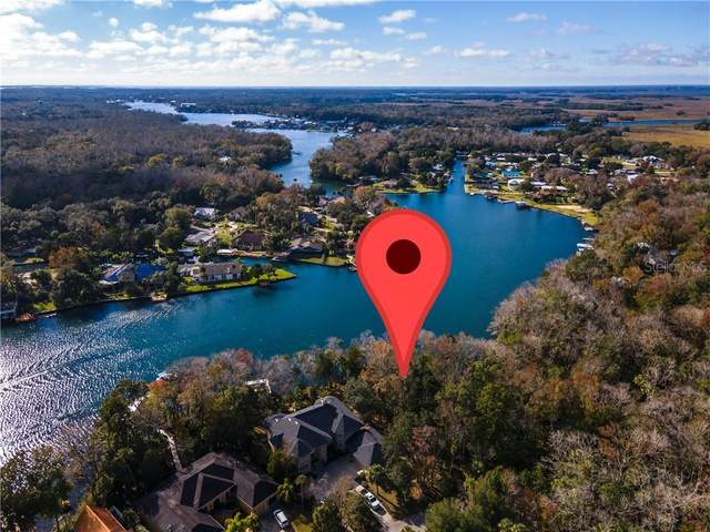 9580 W River Holly Path, Homosassa, FL 34448 (MLS #A4489225) :: Young Real Estate
