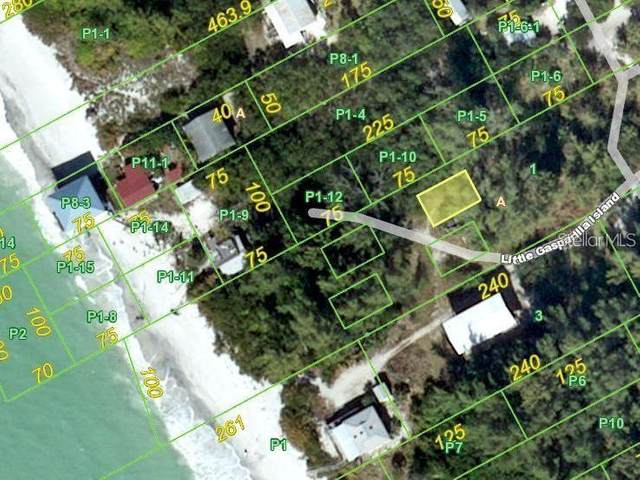 8158 Little Gasparilla Island, Placida, FL 33946 (MLS #A4489231) :: Young Real Estate