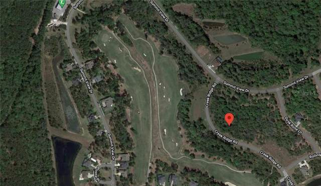 5946 Creek Ridge Road, Brooksville, FL 34601 (MLS #A4489360) :: Griffin Group