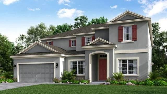 3386 Buoy Circle, Winter Garden, FL 34787 (MLS #A4489528) :: Everlane Realty