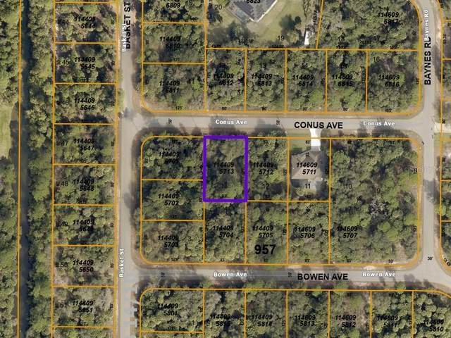 Conus Avenue, North Port, FL 34288 (MLS #A4489529) :: Century 21 Professional Group