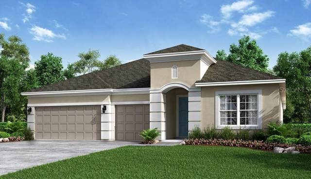3390 Buoy Circle, Winter Garden, FL 34787 (MLS #A4489584) :: Team Buky