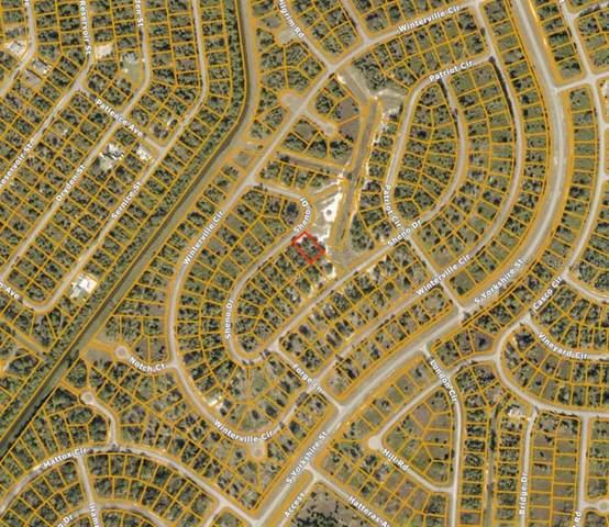 Sheno Drive, North Port, FL 34288 (MLS #A4489640) :: Team Buky