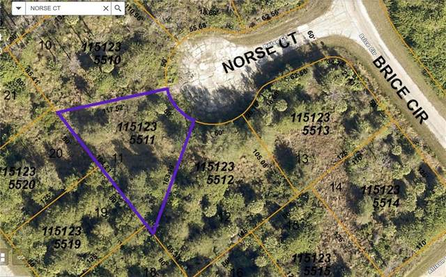 Norse Court, North Port, FL 34288 (MLS #A4491584) :: Bridge Realty Group
