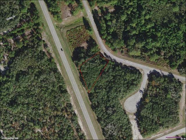 Marlin Drive, Poinciana, FL 34759 (MLS #A4491850) :: The Heidi Schrock Team