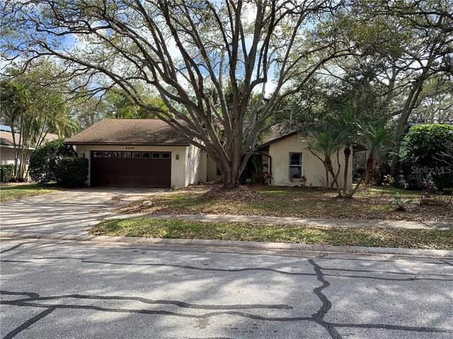 3409 45TH Street W, Bradenton, FL 34209 (MLS #A4492321) :: Pepine Realty